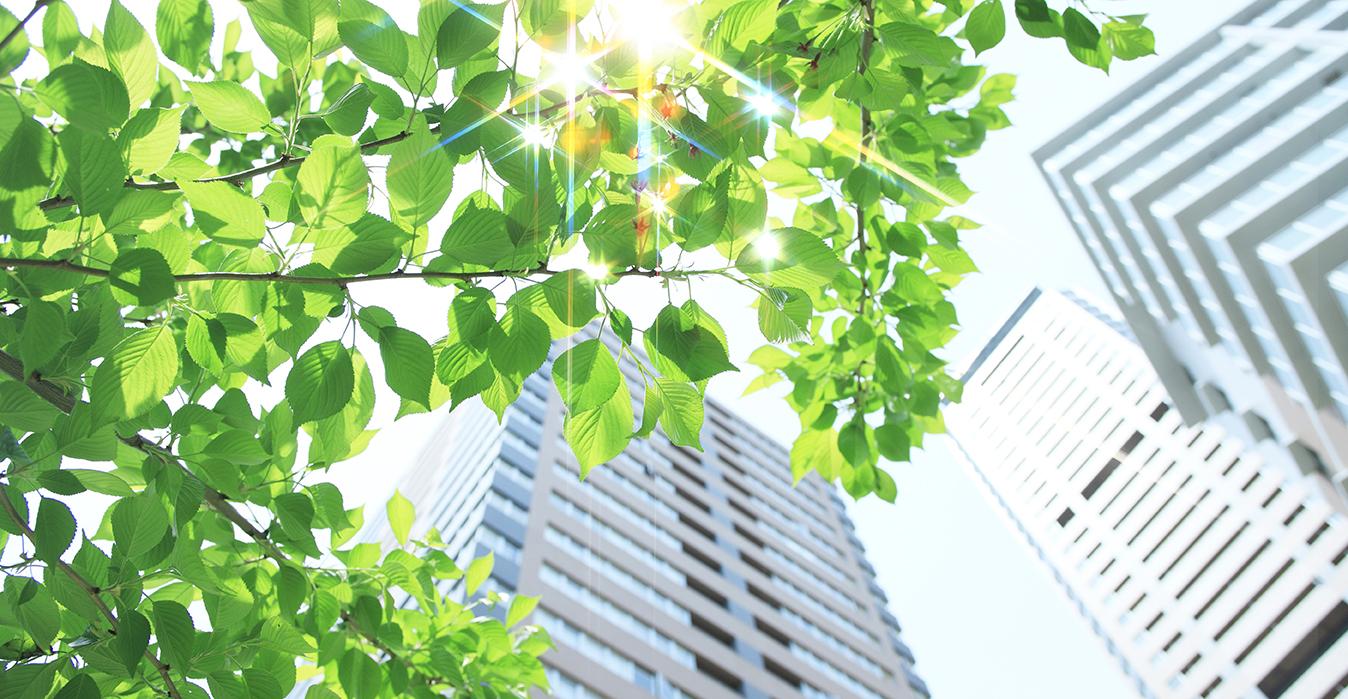 Contribuimos a la sostenibilidad ambiental